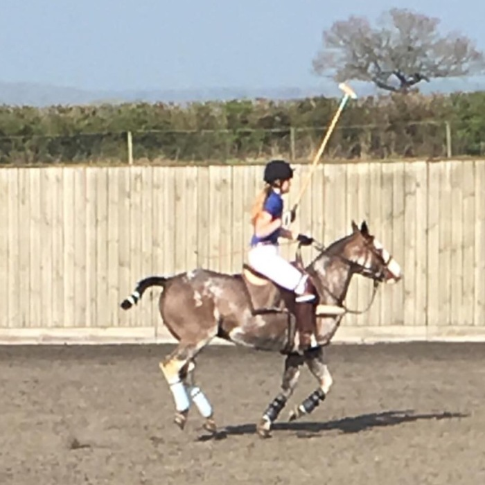 The Polo Diaries: The First (Fast)Chukka